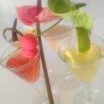 punch liqueur antillaise 2