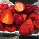 fraises 1